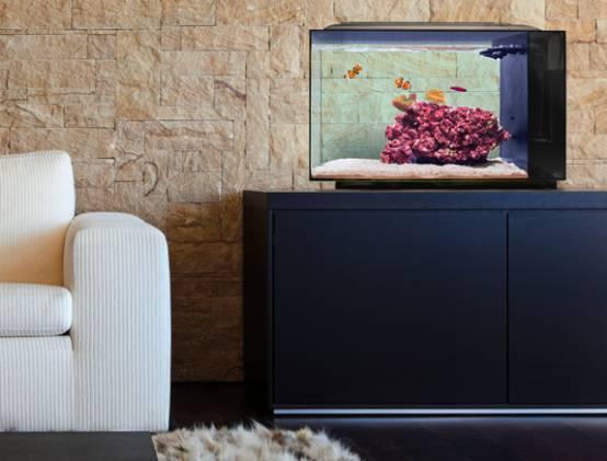 呵护鱼儿健康的智能水族箱BIOTA-广州磐众智能科技有限公司